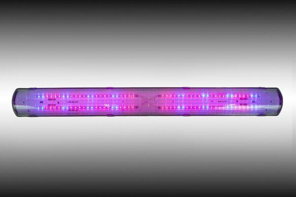 Фитосветильник светодиодный «Арктик-фито» EFFEST 50 FITO АРКТИК IP54 4 LED24 Red: 660nm. Blue: 450nm. Соотношение 7,3:1:3000К:5500К